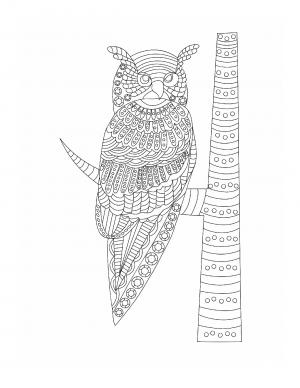 Illustration #893