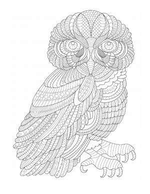 Illustration #894