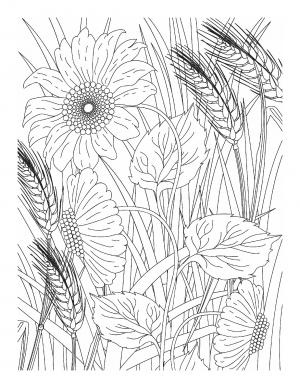 Illustration #953