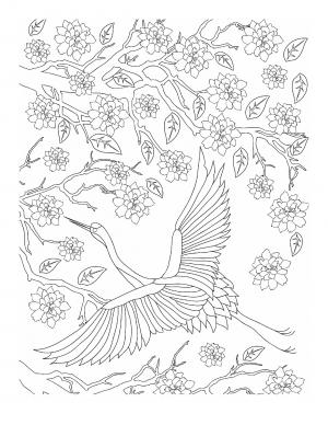 Illustration #965