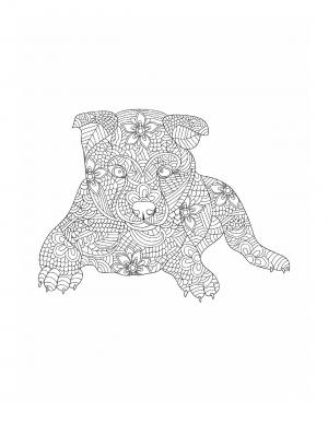 Illustration #993