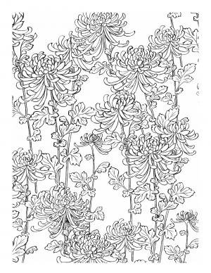 Illustration #1016