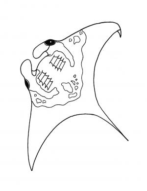 Illustration #1153