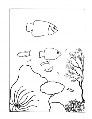 Illustration #1167