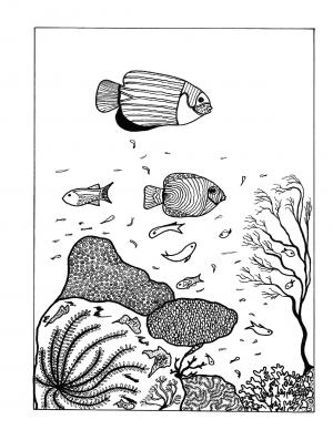 Illustration #1168