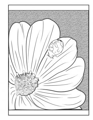 Illustration #1236