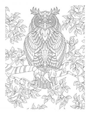Illustration #453
