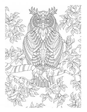 Illustration #585