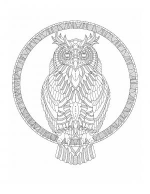 Illustration #592