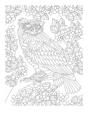 Illustration #618