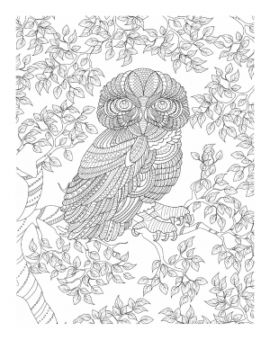 Illustration #633