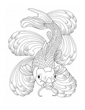 Illustration #751