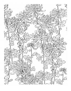 Illustration #758