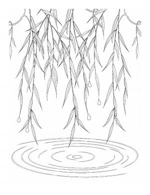 Illustration #761