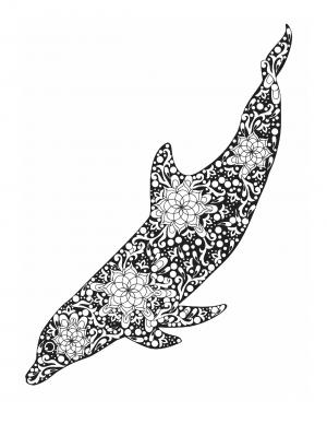 Illustration #807