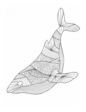 Illustration #815