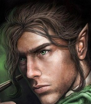 MALE ELF 1 2 3 DWARF GNOME FEMALE HUMAN ORC DROW
