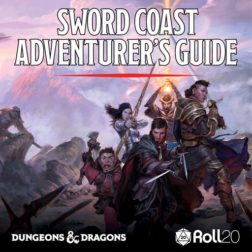 Sword Coast Adventurer's Guide Token Pack