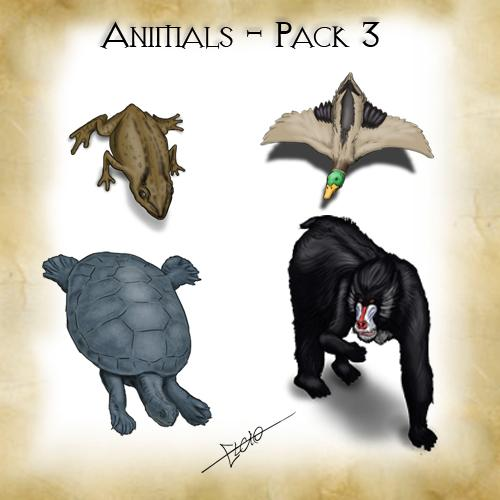 Animals - Pack 3