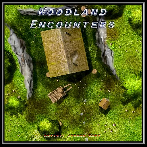 Woodland Encounters