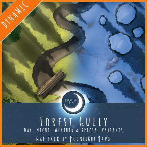 Dynamic   Forest Gully