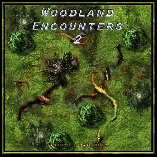 Woodland Encounters 2