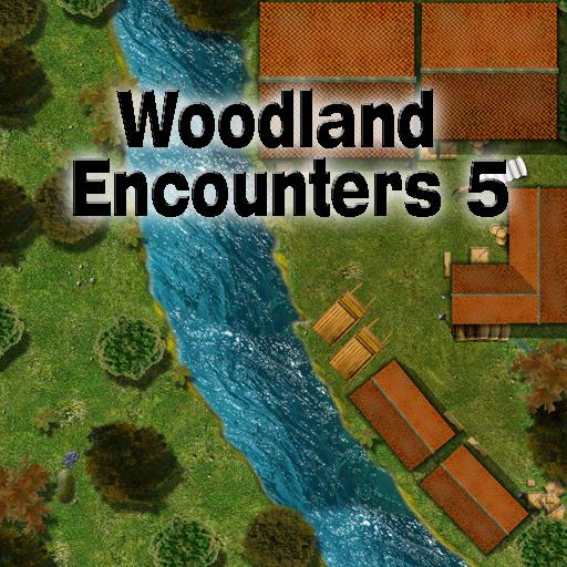 Woodland Encounters 5