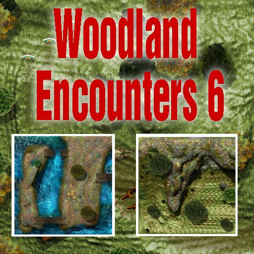 Woodland Encounters 6