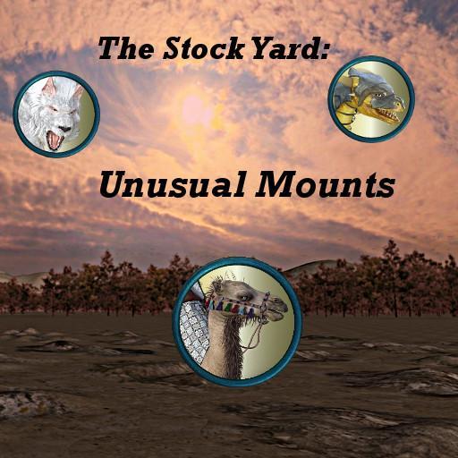 The Stockyard: Unusual Mounts