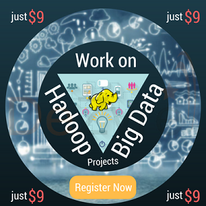Work on Big Data Hadoop Projects