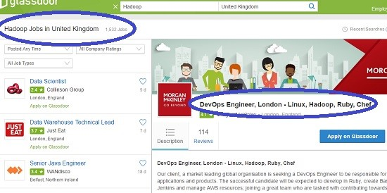 Global Big Data & Hadoop Developer Salaries Review