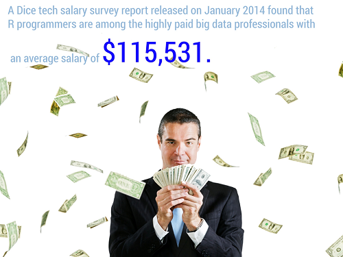 Average Salary for R Programmers