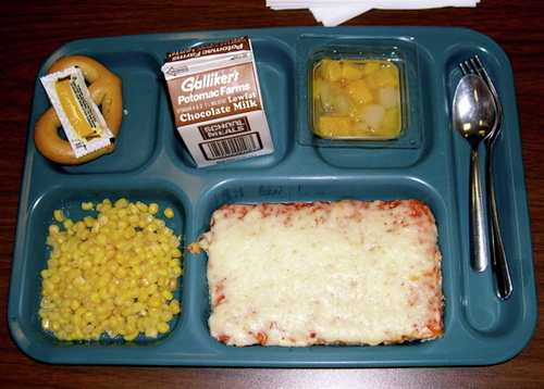 Persuasive essay on school lunches
