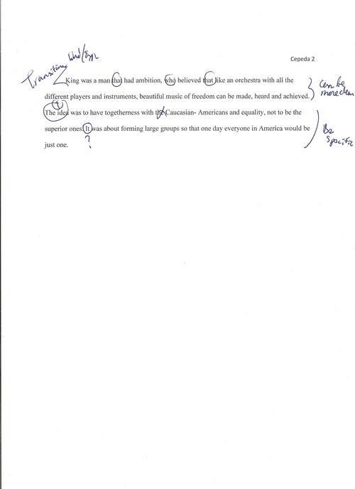 how to write a diagnostic essay diagnostic essay example oglasi