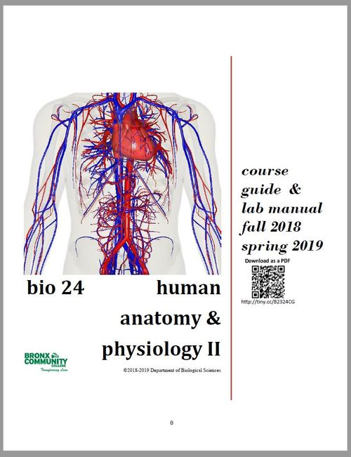 Digication Eportfolio Human Anatomy And Physiology Bio 23 And