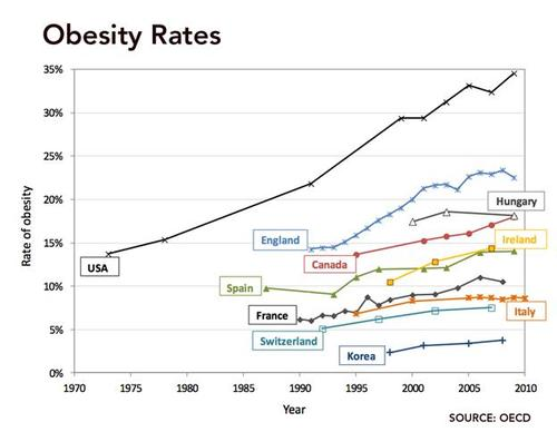 is fast food the cause of obesity in america