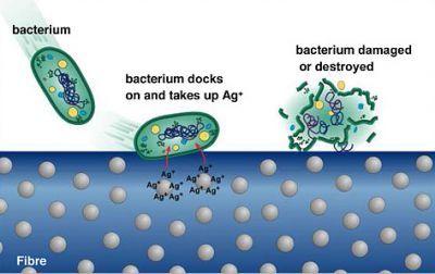 """Résultat de recherche d'images pour """"silver nanoparticles antimicrobial"""""""