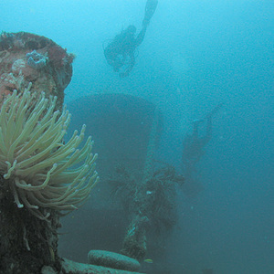 MV River Taw wreck; photo by Clark Anderson/Aquaimages, used under Creative Commons Attribution-ShareAlike 2.5 license