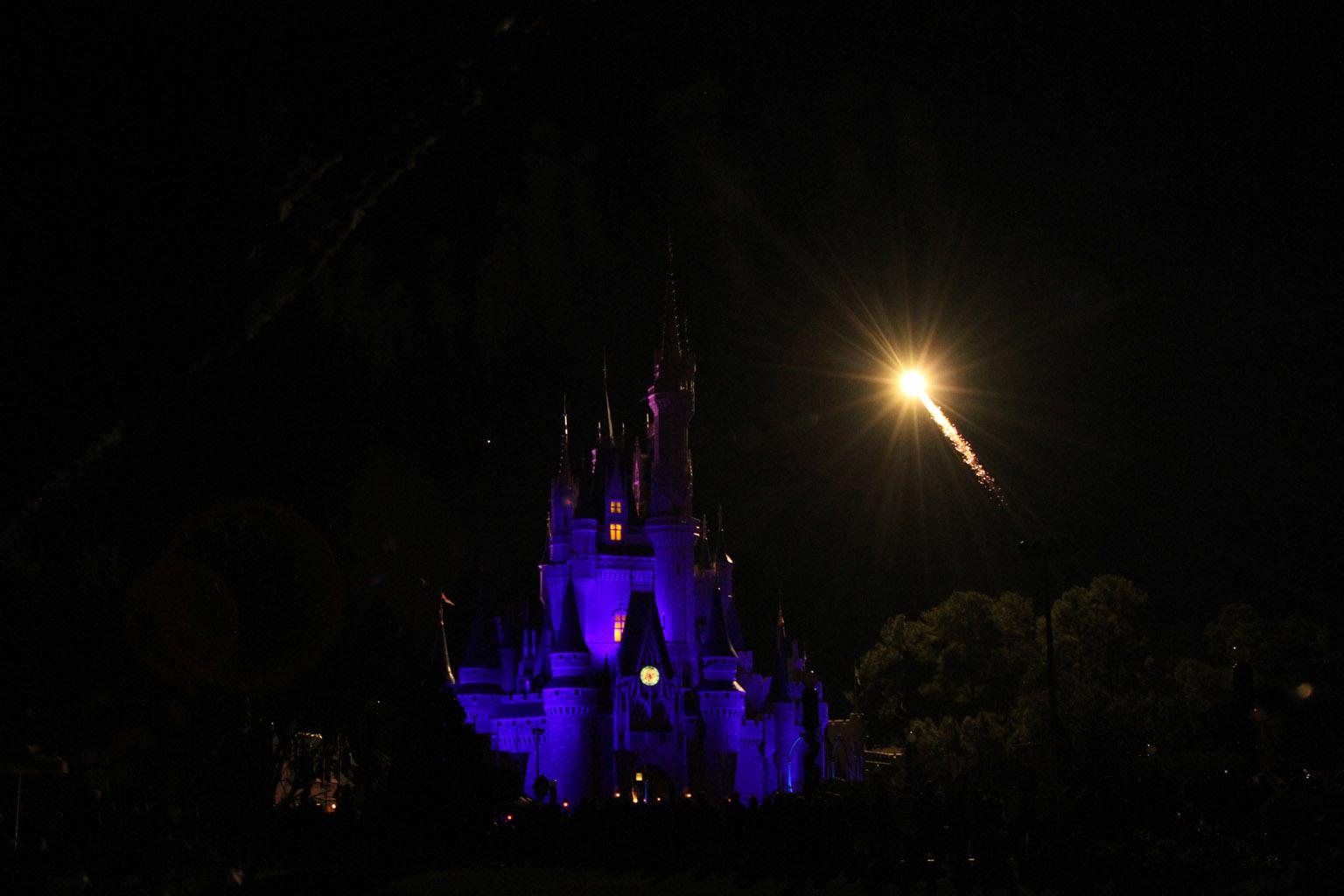 Magic Hat Walt Disney World • ...