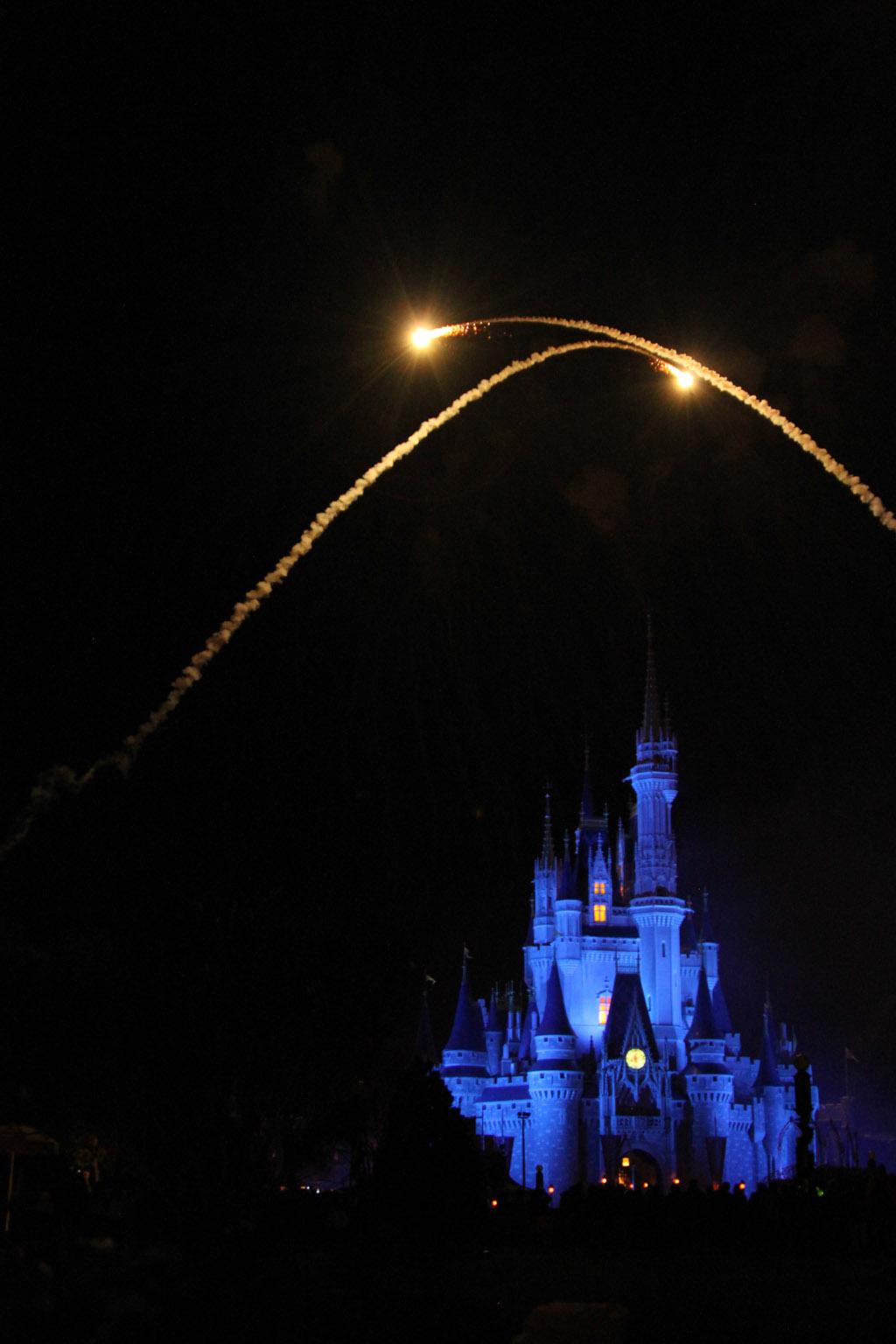 World Of Disney Christmas Tree