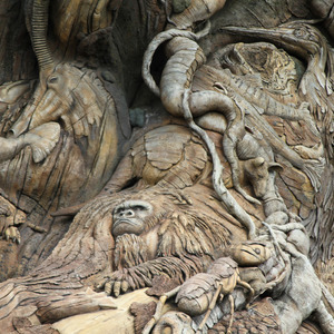 Carvings on the Tree of Life