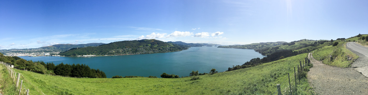 Panorama of Otago Harbour