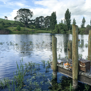 Fishing dock in the Shire