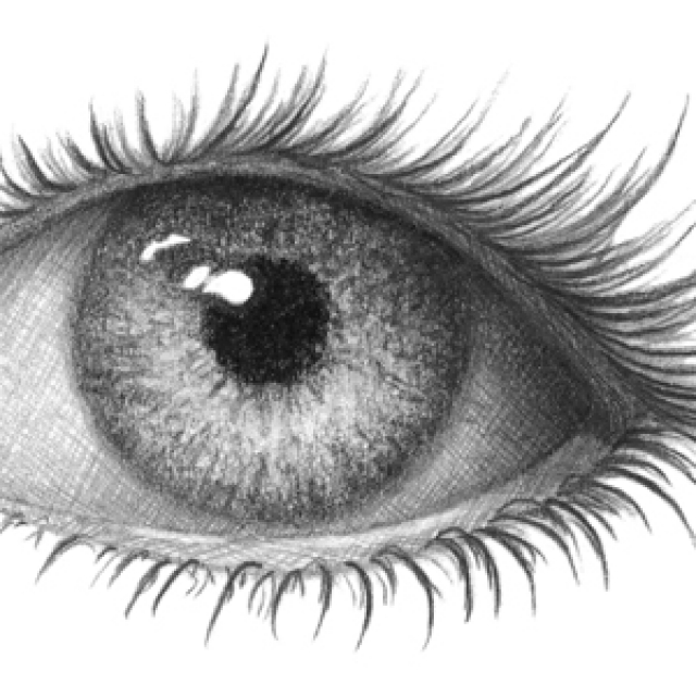 A7 Draw A Realistic Eye Overview Drawspace