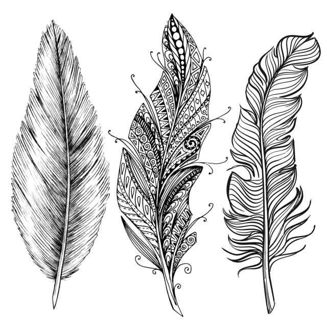Line Art Feather : A use lines to draw feather overview drawspace