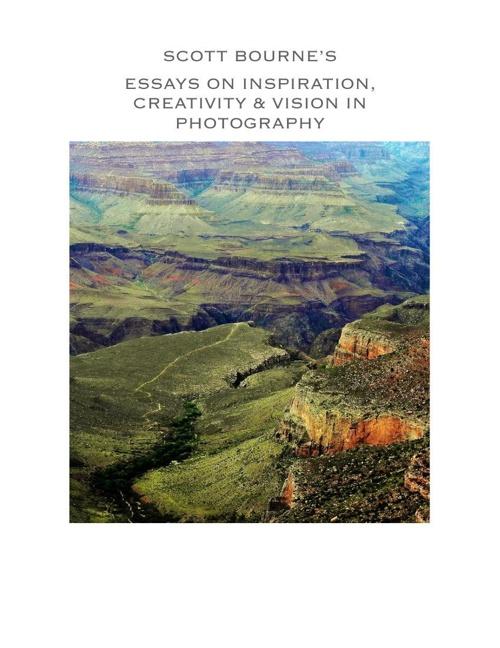 Vision - Scott Bourne