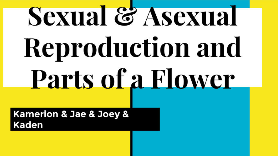 Sexual & Asexual reproduction and parts of a flower