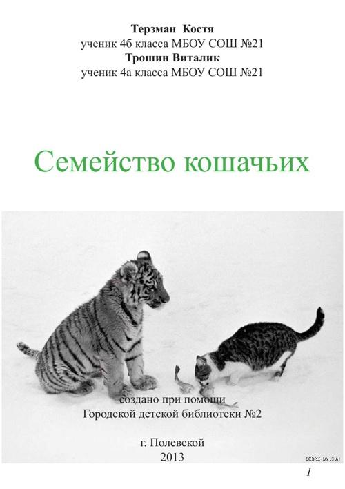 Семейство кошачьих (часть2)