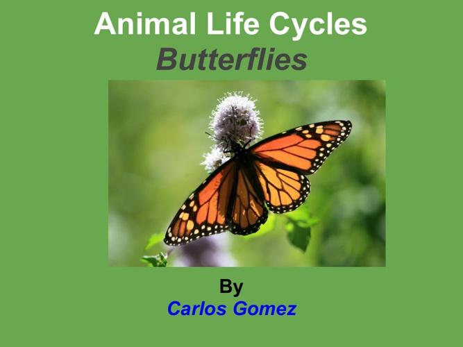 carlos mariposa