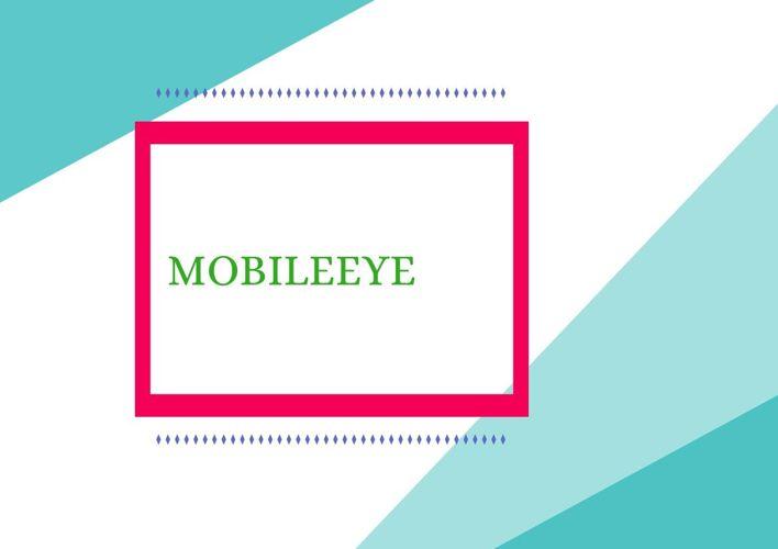 О системе Мобилай (Mobileye)